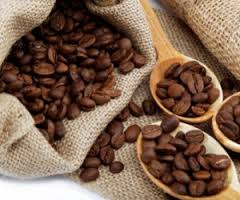 Kenya coffee earnings jump 17 Percent