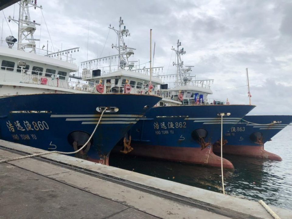 """In August, the government finally responded with its stance. The Director General of the National Fisheries and Aquaculture Authority (NaFAA) Emma Metieh Glassco said permitting the vessels would be a """"breach of international protocols. The six gigantic vessels that came to Liberia have larger fishing capacities,"""" Glassco said. """"Such vessels have never come to Liberia to fish and, worse, their authorization from the flag-state, which is the Peoples Republic of China, has expired."""""""