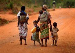 african population growth /dailnews.co.tz