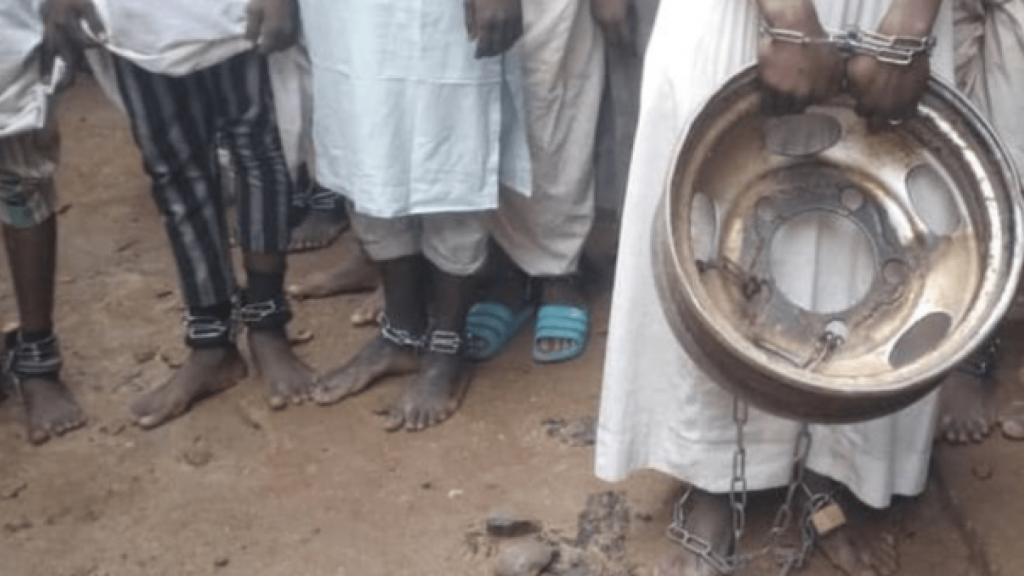 KADUNA, Nigeria (Reuters) - More than 300 boys and men, some as young as five and many in chains and bearing scars from beatings, have been rescued in a raid on a building that purported to be an Islamic school in northern Nigeria, police said on Friday.